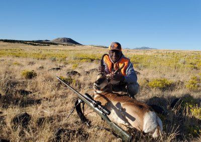 Grayson's Antelope