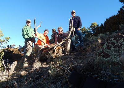 Lyndon Friant 2019 Boulder Late Season Bull