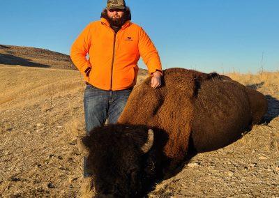 Kendrick Jensen 2020 Antelope Island Bison
